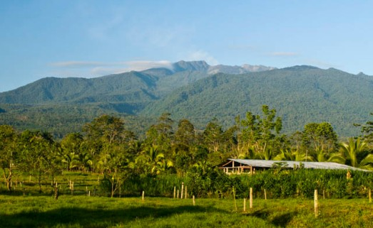 Turriabla Volcano Las lapas Farm