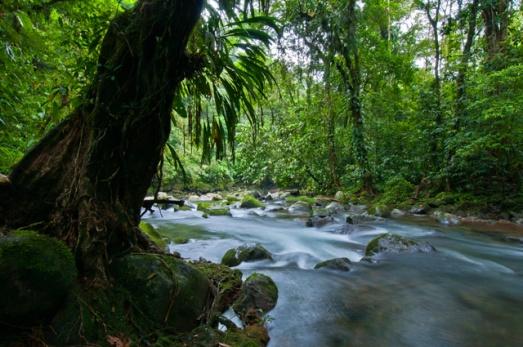 River at Las Lapas Farm